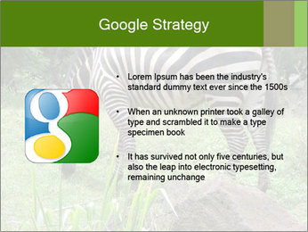 0000082404 PowerPoint Template - Slide 10