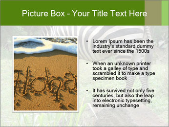 0000082404 PowerPoint Template - Slide 13