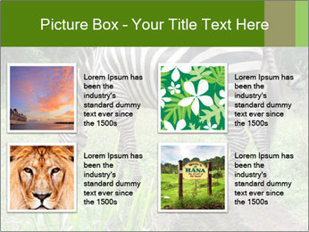 0000082404 PowerPoint Template - Slide 14