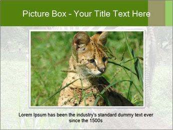0000082404 PowerPoint Templates - Slide 15