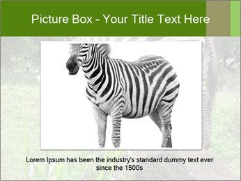 0000082404 PowerPoint Template - Slide 16