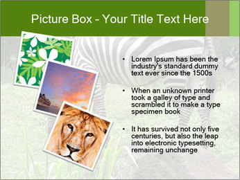 0000082404 PowerPoint Templates - Slide 17