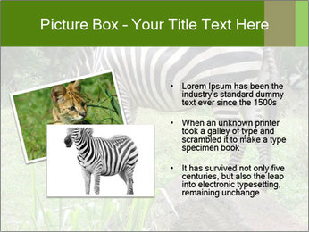 0000082404 PowerPoint Template - Slide 20