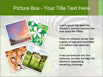0000082404 PowerPoint Template - Slide 23