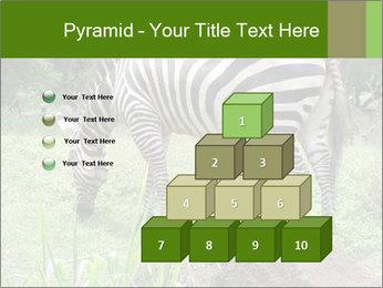 0000082404 PowerPoint Template - Slide 31