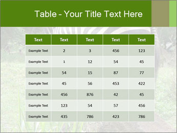 0000082404 PowerPoint Template - Slide 55