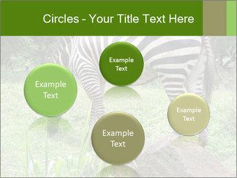 0000082404 PowerPoint Template - Slide 77