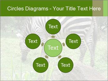 0000082404 PowerPoint Template - Slide 78