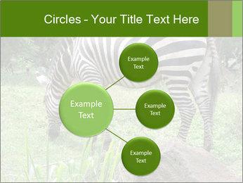 0000082404 PowerPoint Templates - Slide 79
