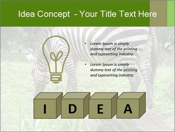 0000082404 PowerPoint Template - Slide 80