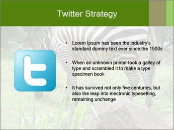 0000082404 PowerPoint Templates - Slide 9