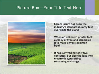 0000082405 PowerPoint Template - Slide 13