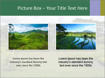 0000082405 PowerPoint Template - Slide 18