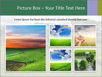 0000082405 PowerPoint Template - Slide 19