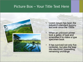 0000082405 PowerPoint Template - Slide 20