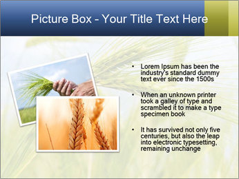 0000082407 PowerPoint Templates - Slide 20