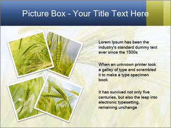 0000082407 PowerPoint Templates - Slide 23