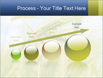 0000082407 PowerPoint Templates - Slide 87