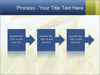0000082407 PowerPoint Templates - Slide 88