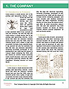 0000082408 Word Templates - Page 3