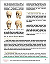 0000082408 Word Templates - Page 4