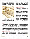0000082413 Word Templates - Page 4