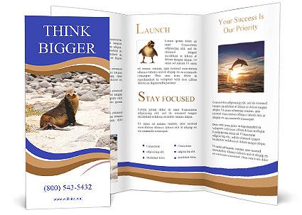 0000082414 Brochure Templates