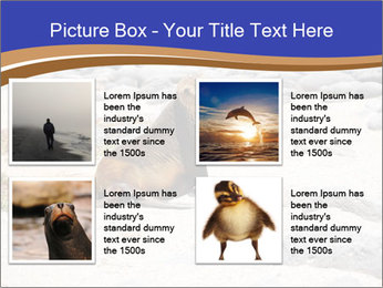 0000082414 PowerPoint Templates - Slide 14