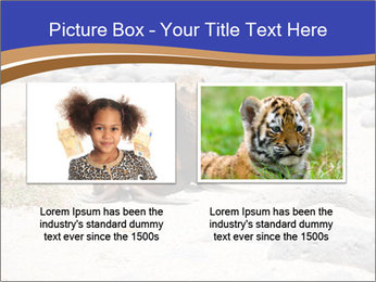 0000082414 PowerPoint Templates - Slide 18