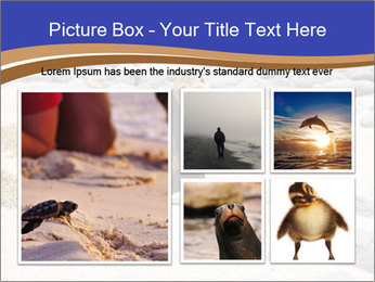 0000082414 PowerPoint Templates - Slide 19