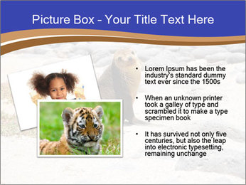 0000082414 PowerPoint Templates - Slide 20