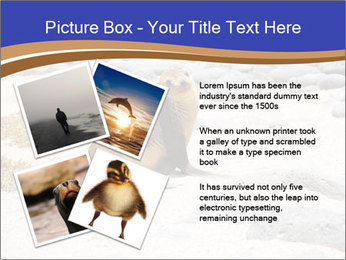 0000082414 PowerPoint Templates - Slide 23