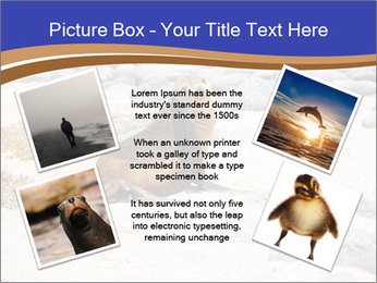 0000082414 PowerPoint Templates - Slide 24