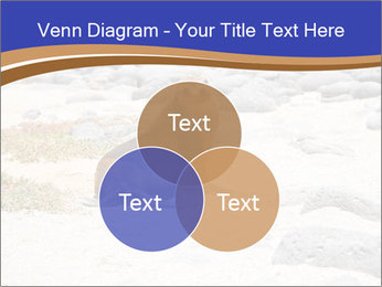 0000082414 PowerPoint Templates - Slide 33