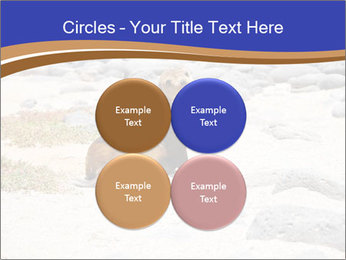 0000082414 PowerPoint Template - Slide 38