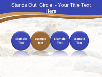 0000082414 PowerPoint Templates - Slide 76