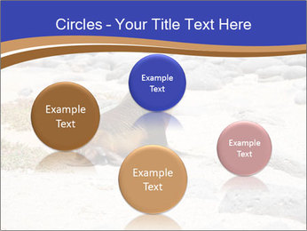 0000082414 PowerPoint Templates - Slide 77