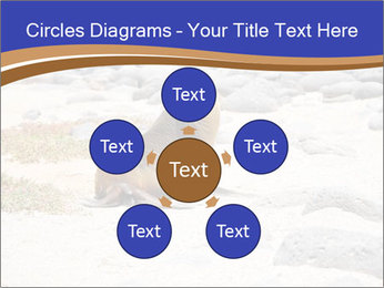 0000082414 PowerPoint Templates - Slide 78