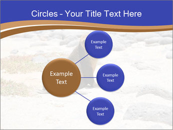 0000082414 PowerPoint Templates - Slide 79