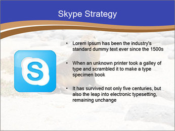 0000082414 PowerPoint Templates - Slide 8
