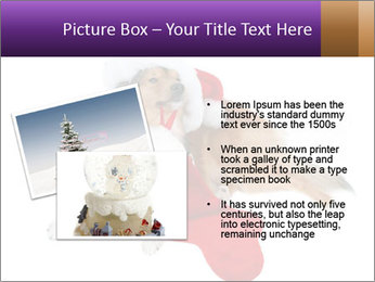 0000082415 PowerPoint Template - Slide 20