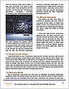 0000082415 Word Template - Page 4