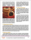 0000082418 Word Templates - Page 4