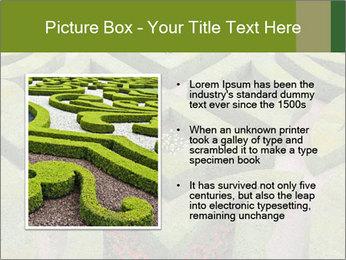 0000082421 PowerPoint Template - Slide 13