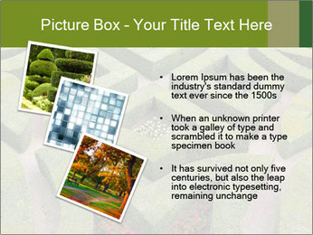 0000082421 PowerPoint Template - Slide 17
