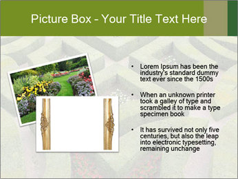 0000082421 PowerPoint Template - Slide 20
