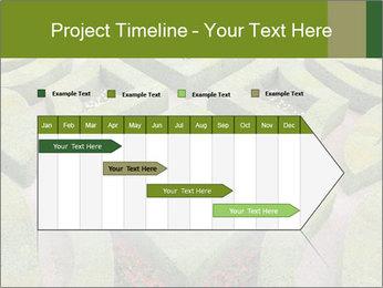 0000082421 PowerPoint Template - Slide 25