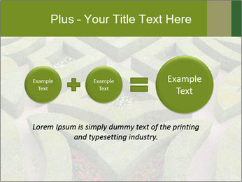 0000082421 PowerPoint Template - Slide 75