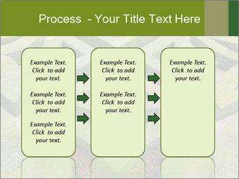 0000082421 PowerPoint Template - Slide 86