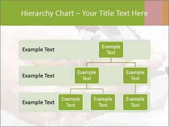 0000082424 PowerPoint Template - Slide 67